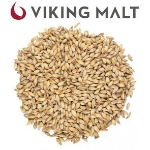 MALTO IN GRANI VIKING CARA PALE (5 KG.)