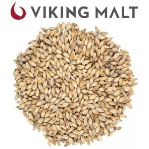 MALTO IN GRANI VIKING DARK ALE (1 KG.)