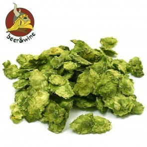 LUPPOLO CHINOOK (1 KG.) IN CONI - CROP 2020