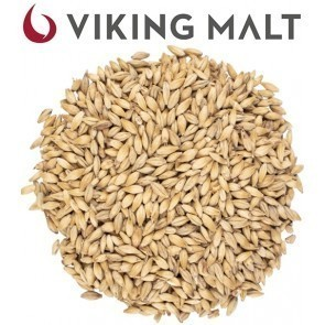 MALTO IN GRANI VIKING PALE ALE BIOLOGICO (5 KG.)