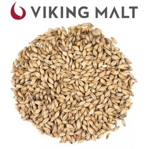 MALTO IN GRANI VIKING RED ACTIVE (1 KG.)